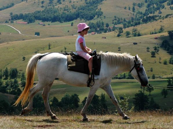 Zlatibor jahanje konja